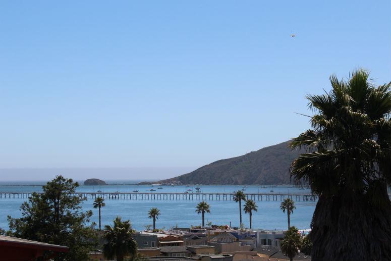 Ocean View-775